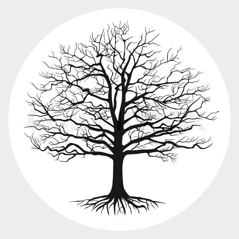 27+ Bare Tree Silhouette  Images