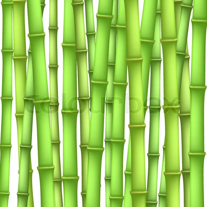 Cartoon Bamboo Stick ~ Bamboo background stock vector colourbox