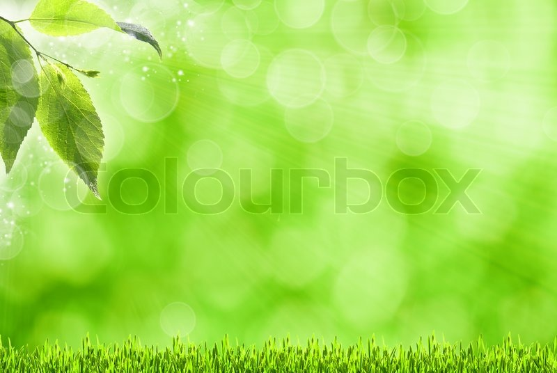 Stock image of 'Abstract spring backgrounds with defocused bokeh and sun beams'