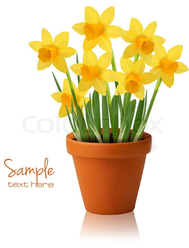 Spring Flower Background With Ripped Stock Vector Colourbox
