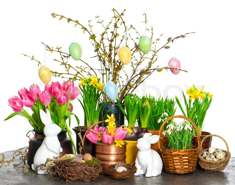 Spring Flowers With Easter Bunny And Stock Photo Colourbox