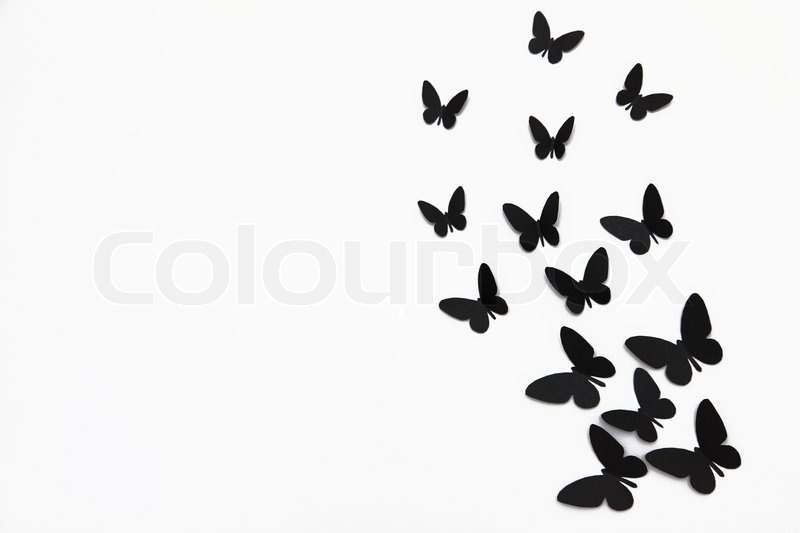 Black butterfly isolated on white background | Stock Photo ...