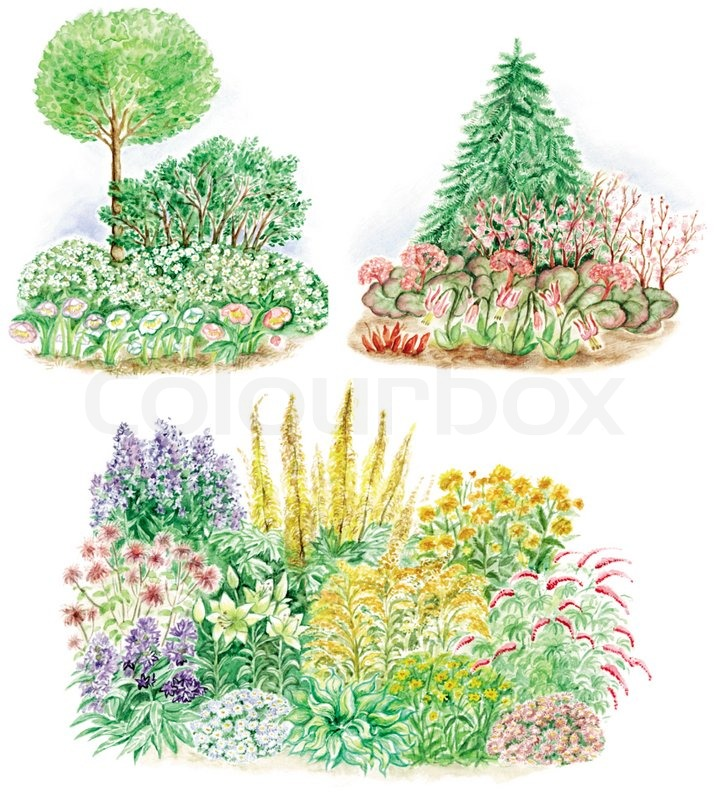 Watercolors hand painted pictures of garden design and for Garden designs the different types of gardens