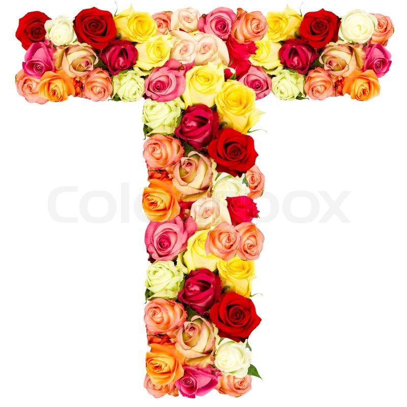 T, roses flower alphabet   Stock Photo   Colourbox