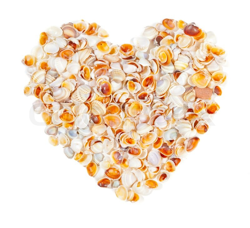 A heart made of sea shells isolated stock photo colourbox for What are shells made of