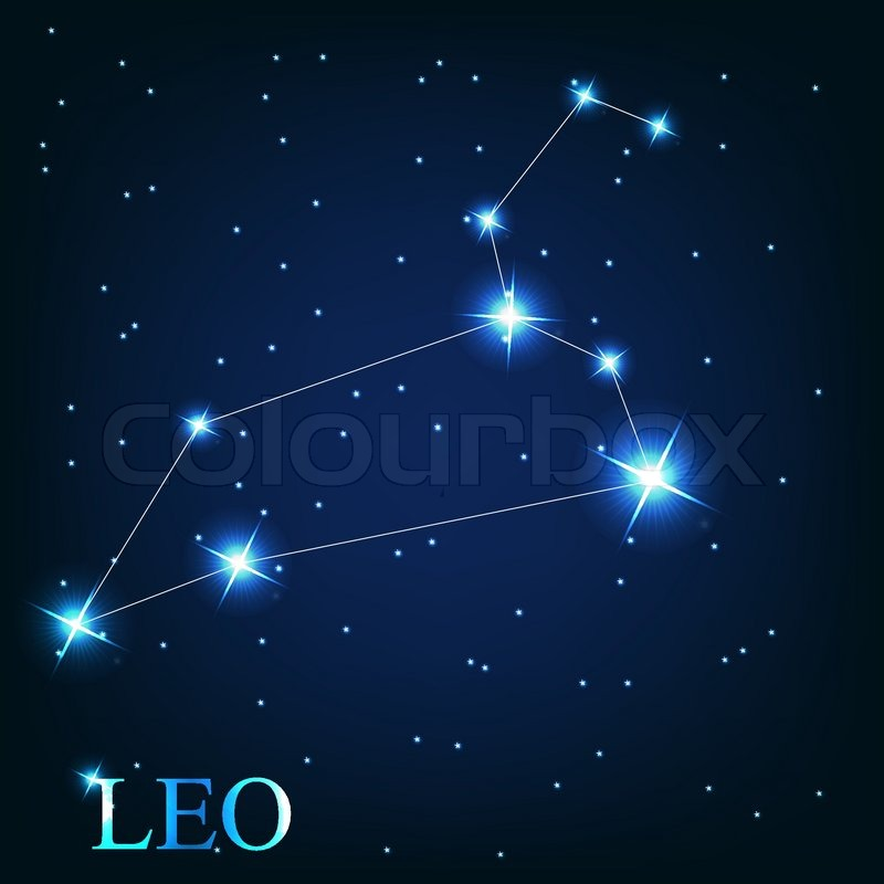 Vector of the leo zodiac sign of the     | Stock vector