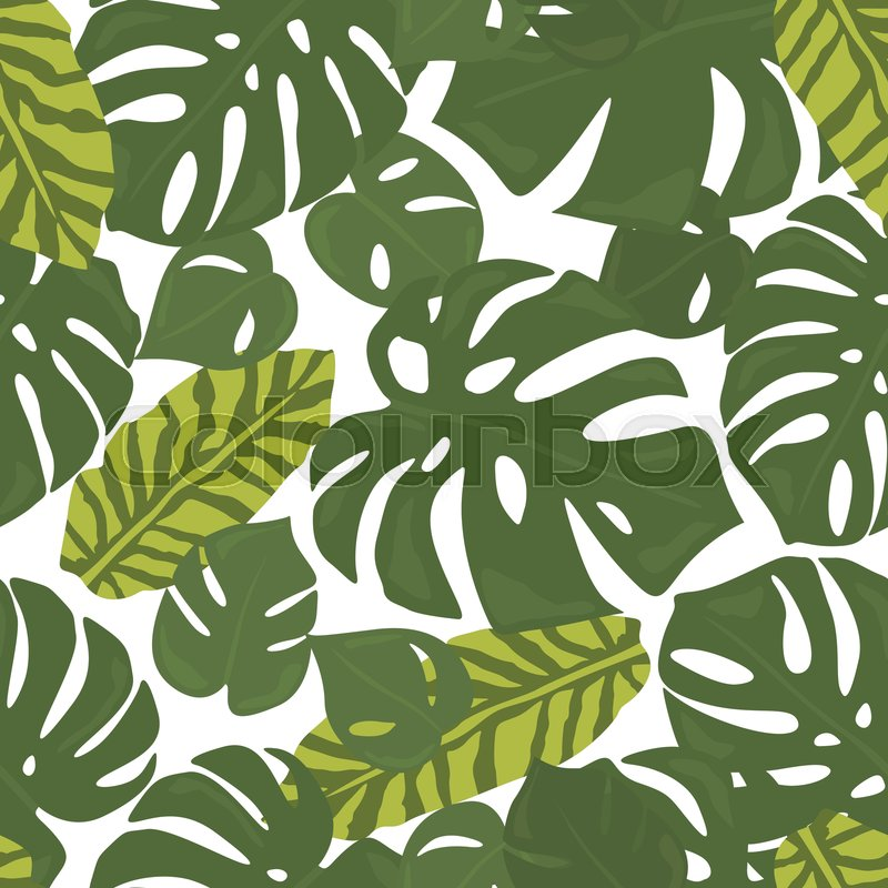 Monstera Tropical Forest Leaves Stock Vector Colourbox There are 2147 tropical leaves background for sale on etsy, and they cost $4.54 on average. monstera tropical forest leaves