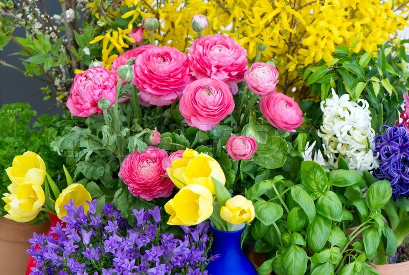 Beautiful spring flowers with easter decoration stock photo colorful mix of spring flowers mightylinksfo
