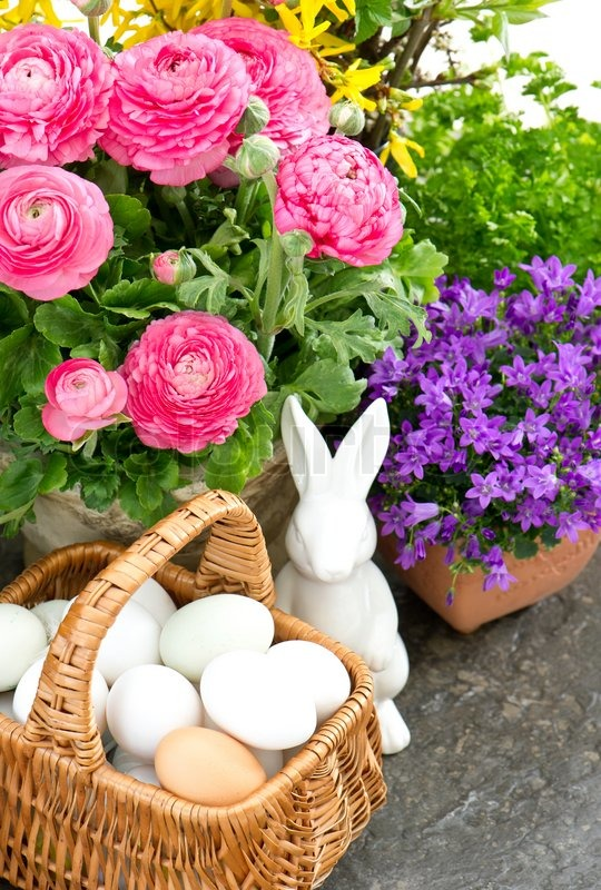 Beautiful Spring Flowers With Easter Decoration Stock
