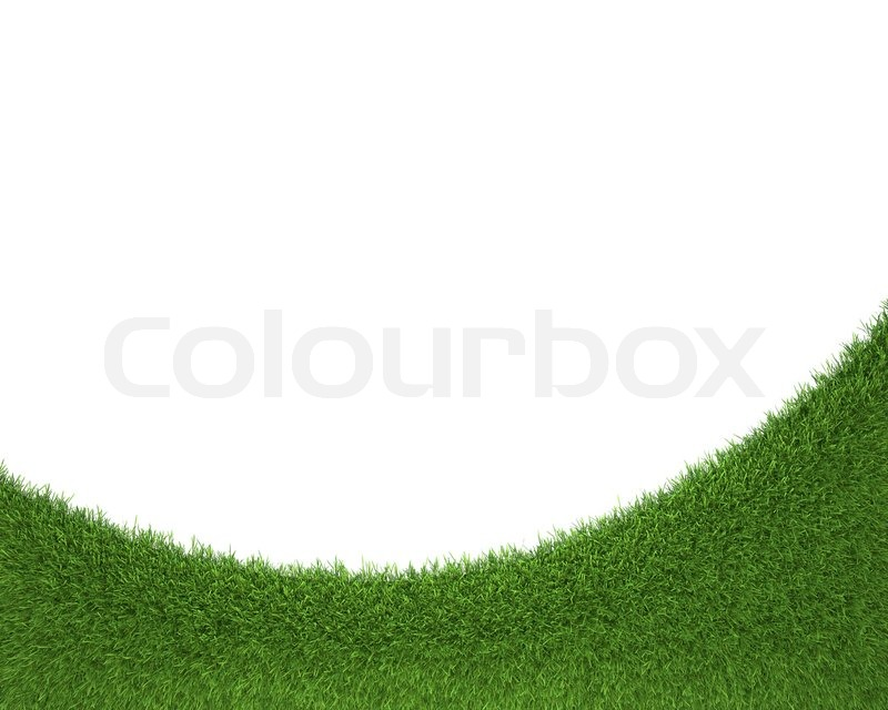 fresh green grass on white background Photo | Free Download