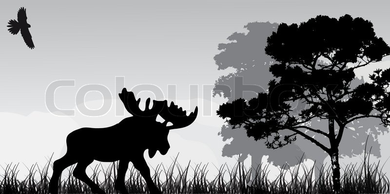 Elk Silhouette Patterns Stock vector of 'silhouette of