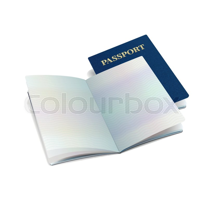 Vector open international passport     | Stock vector