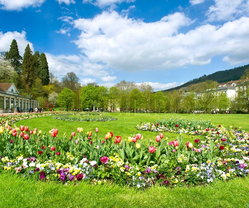 Beautiful park in spring with tulip flowers blossoming ...