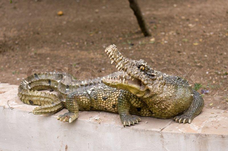 Walking Crocodile Statue Crocodile Statue