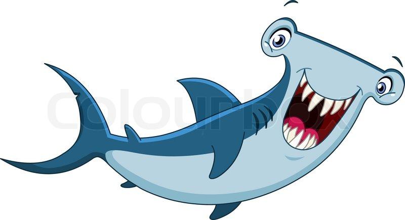 Hammerhead Shark Vector Colourbox