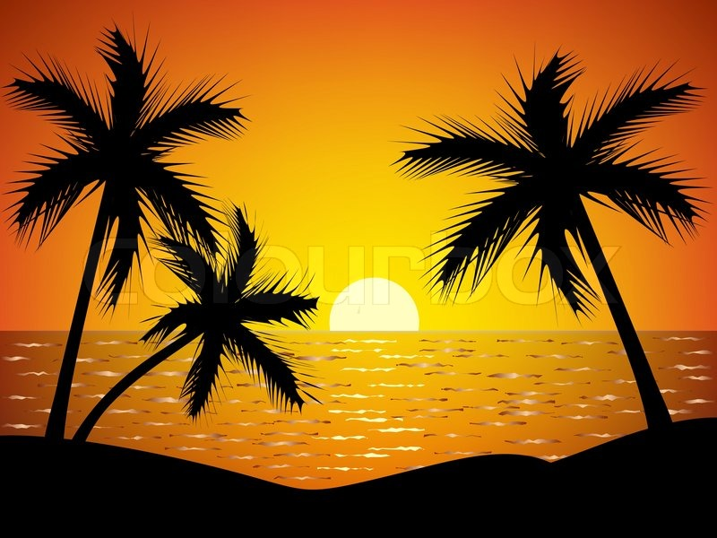 Palm Trees Silhouette At Sunset Stock Vector Colourbox