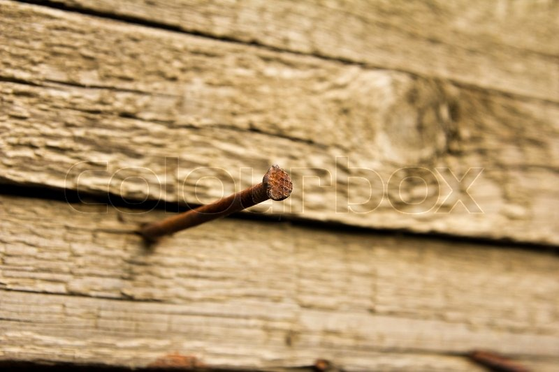 Rusty nail hammered into a wooden board, focus on a nail ...