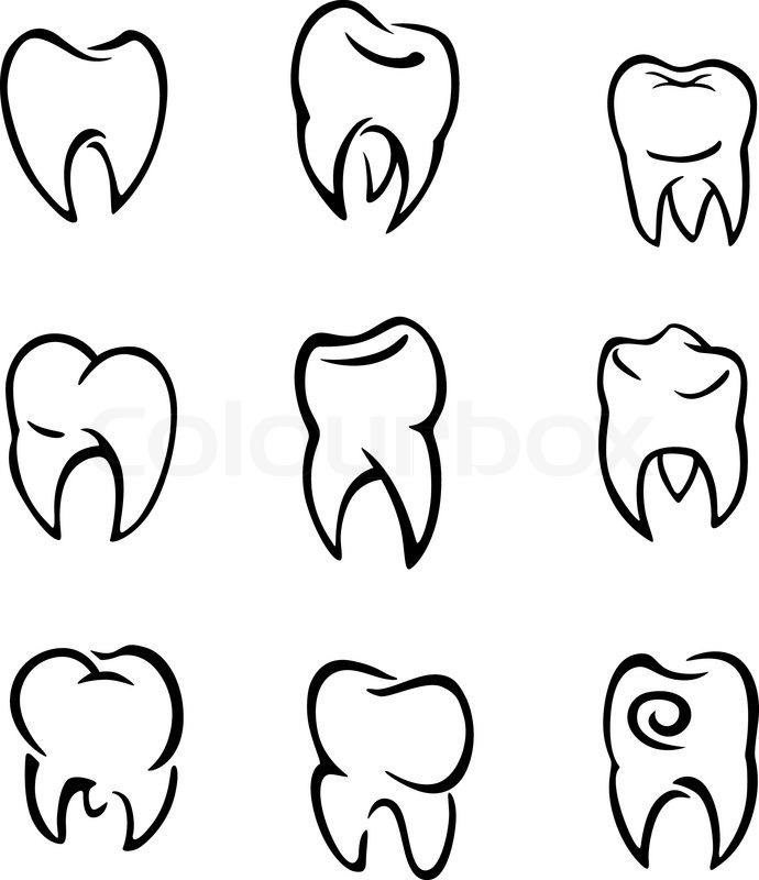 Set Of Teeth Stock Vector Colourbox