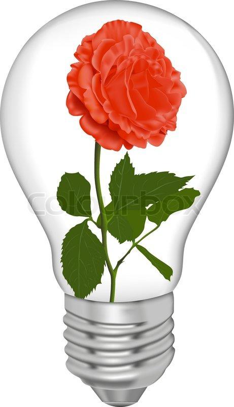 rote rose in einer gl hbirne vektorgrafik colourbox. Black Bedroom Furniture Sets. Home Design Ideas