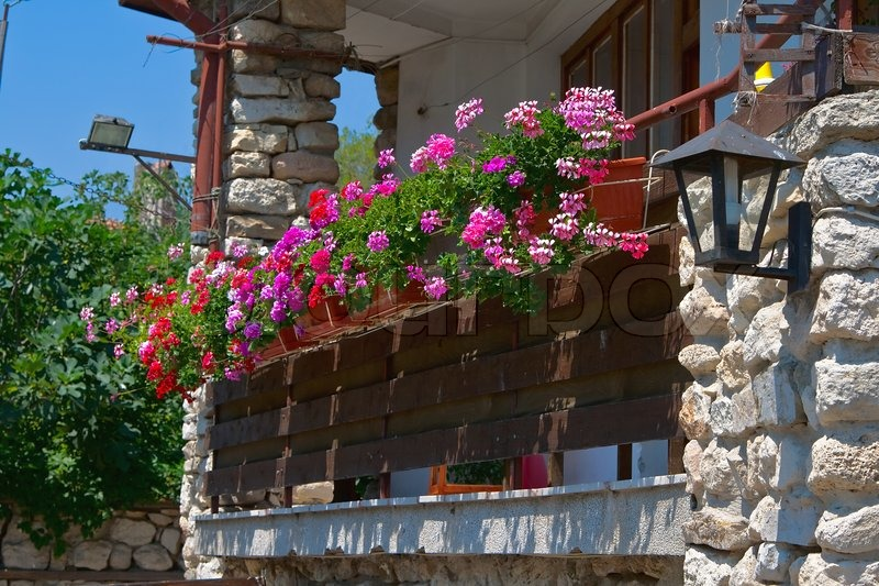 blumen auf dem balkon bulgarien nessebar stockfoto colourbox. Black Bedroom Furniture Sets. Home Design Ideas