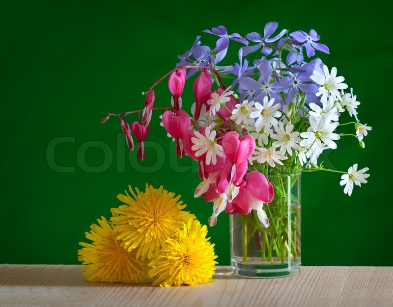 Spring flower bouquet in glass | Stock Photo | Colourbox