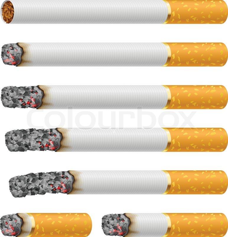 Set of Cigarettes | Stock Vector | Colourbox