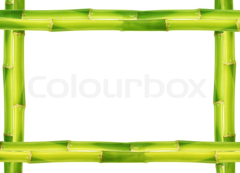 Bamboo frame made of stems   Stock Photo   Colourbox