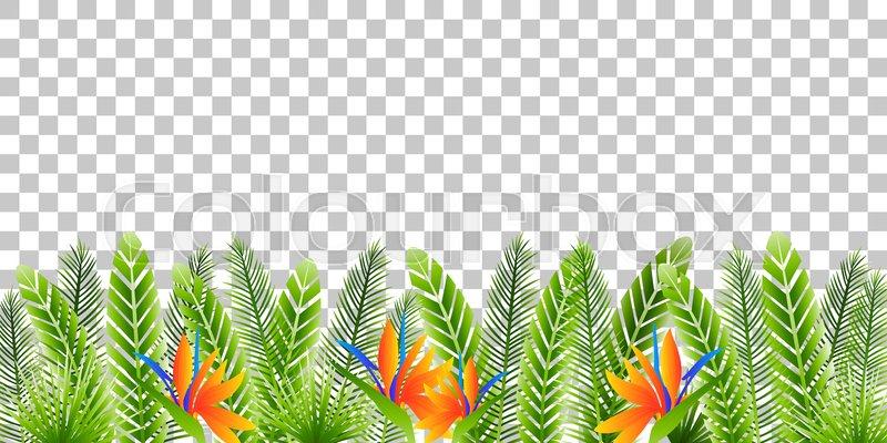 Green Tropical Leaves Border On Stock Vector Colourbox Small hawaiian flowers clip art. green tropical leaves border on