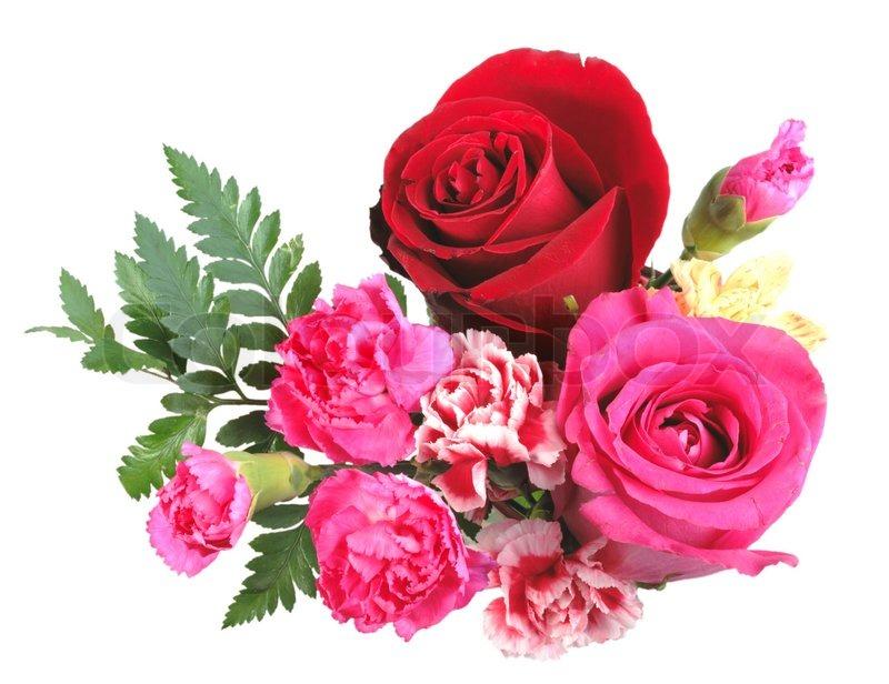 Rose bud love - 2 part 4
