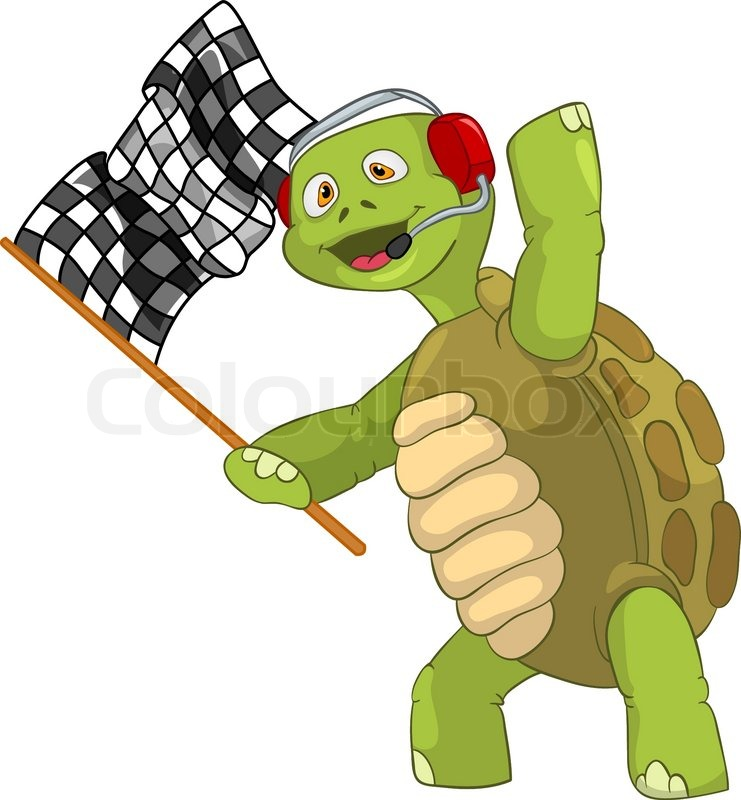 Slow Turtle Funny Funny Turtle Race Finish