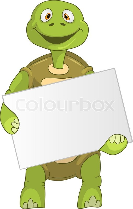 funny turtle holding box