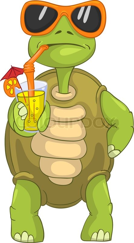 Funny Turtle Drinking Cocktail Stock Vector Colourbox