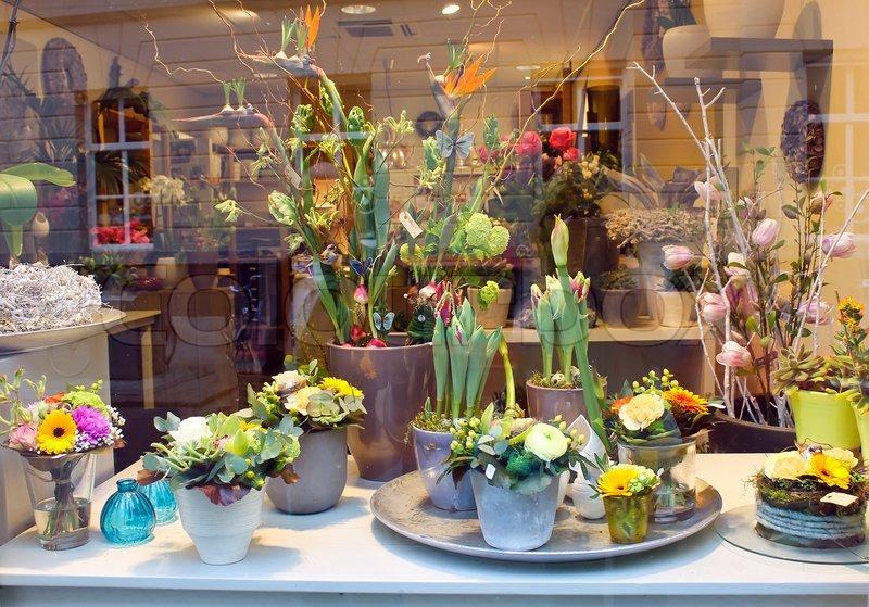 Showcase Floral Shop Den Stock Photo Colourbox
