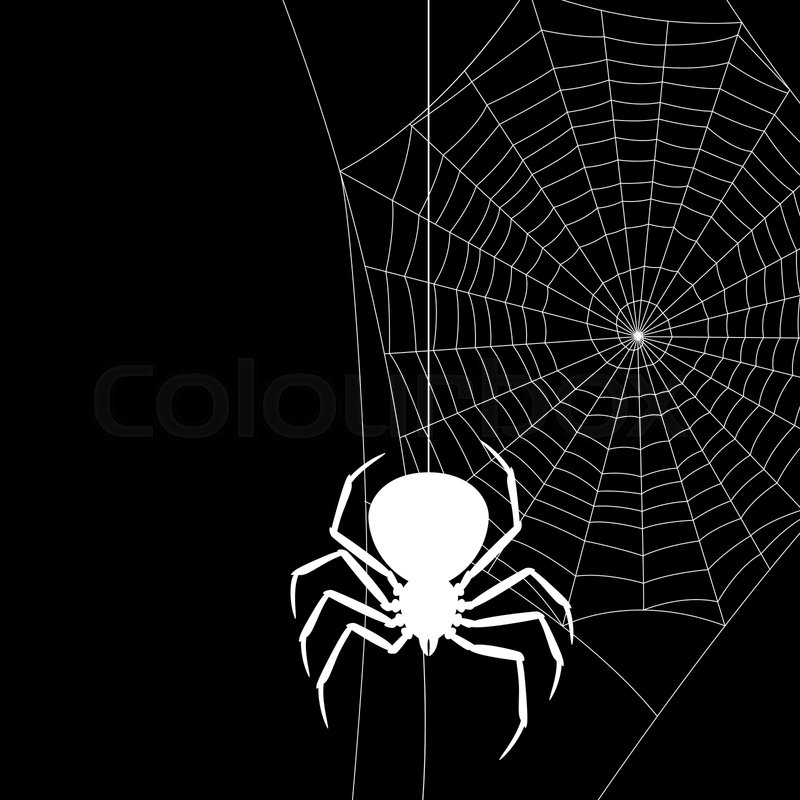 Background With Black Widow Spider Stock Vector Colourbox