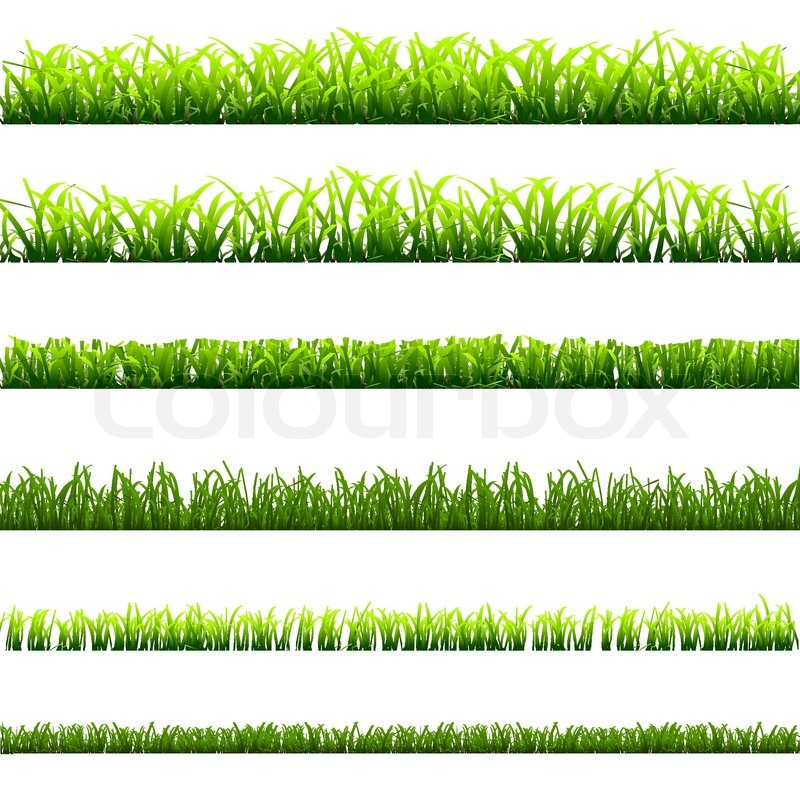 6 Different Types Of Green Grass Stock Vector Colourbox