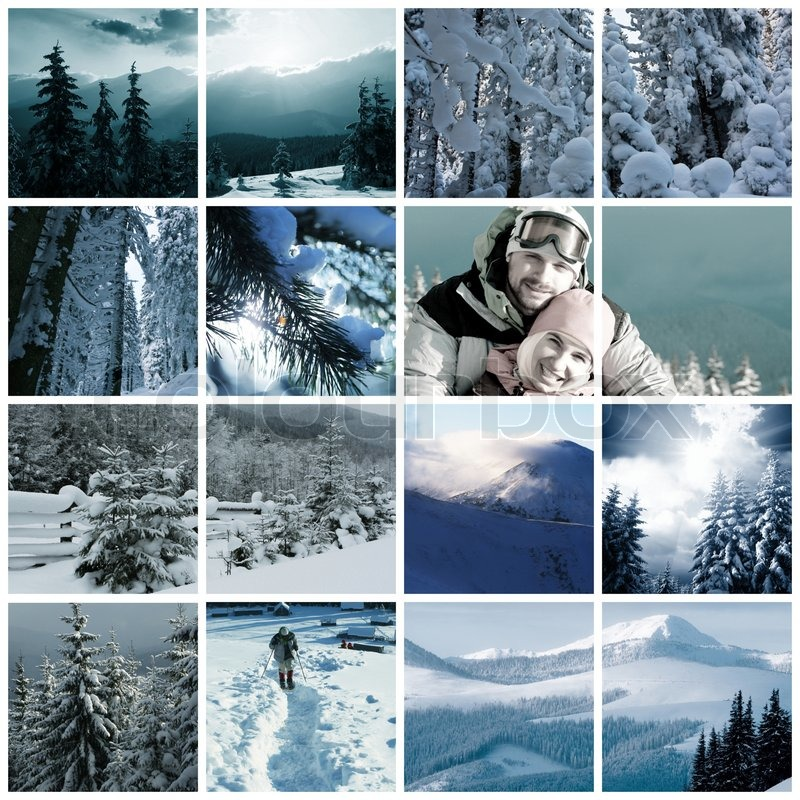 Winter Collage - Bing images