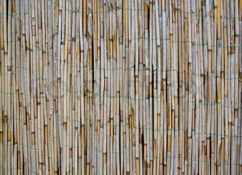 Old Bamboo Reed Texture Stock Photo Colourbox