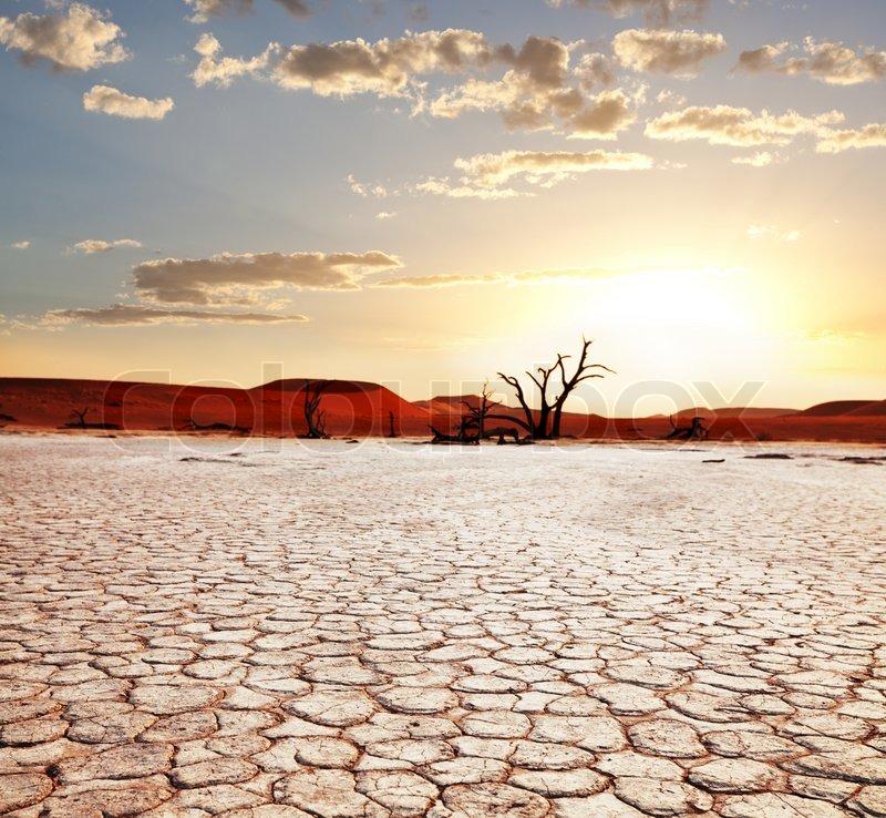 Namib, stock photo
