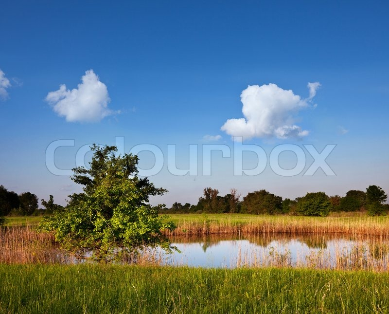 Summer Lake Stock Photo Colourbox
