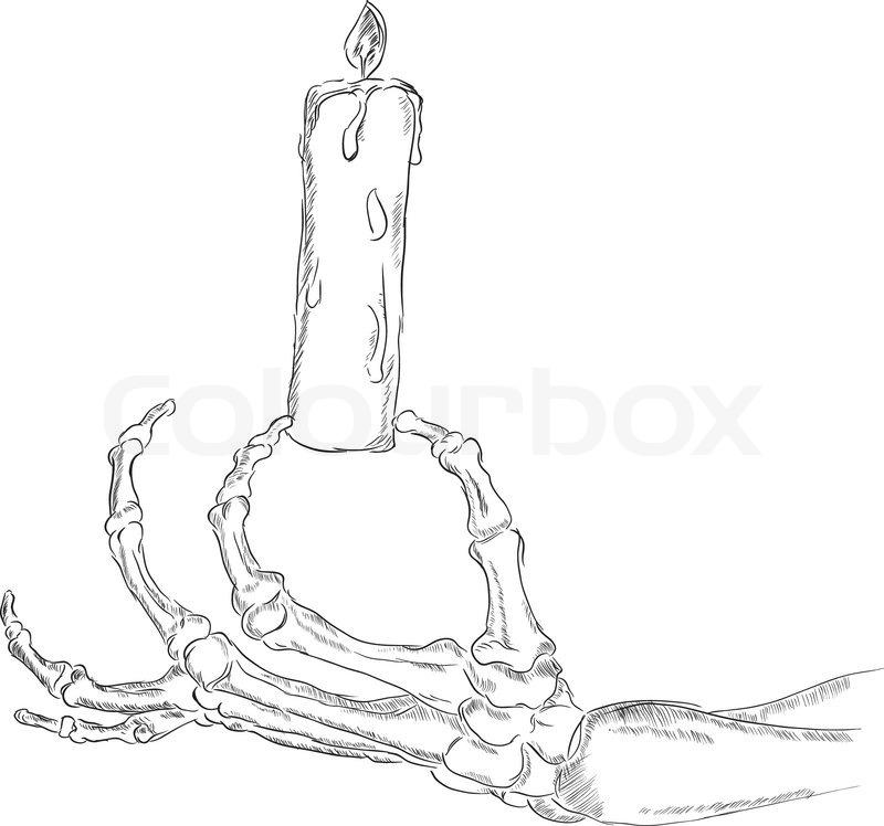 Das Skelett der hand | Vektorgrafik | Colourbox