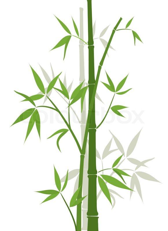 Bambus hintergrund vektor illustration vektorgrafik
