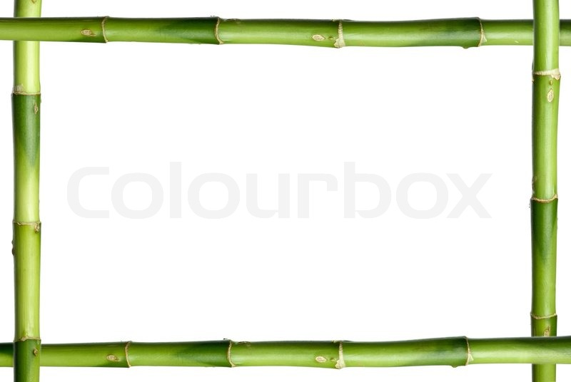 Green bamboo stick frame stock photo colourbox