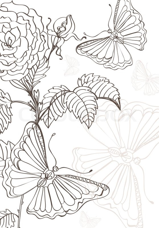 Roses And Butterflies Drawings Doodle backgrou...