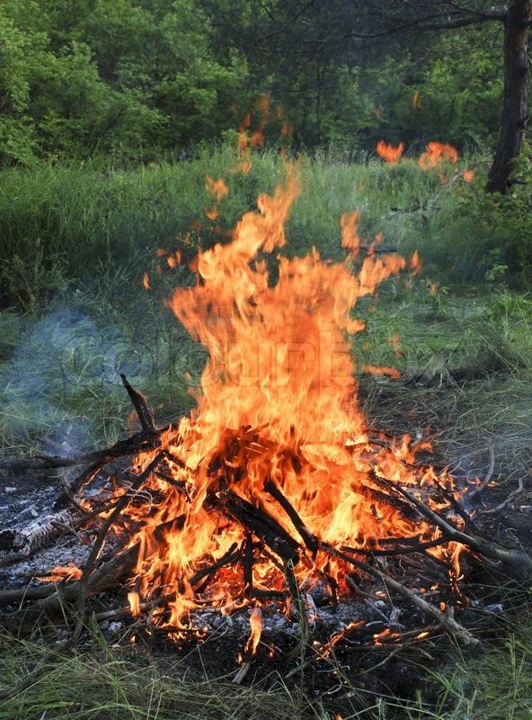 Wooden Camp Fire Stock Photo Colourbox