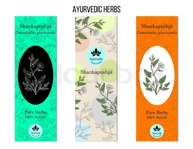 Ayurvedic Herbs Banners Shankapushpi Stock Vector Colourbox