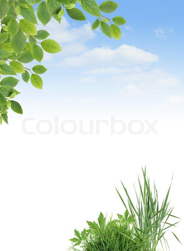 kologie grenze stockfoto colourbox. Black Bedroom Furniture Sets. Home Design Ideas