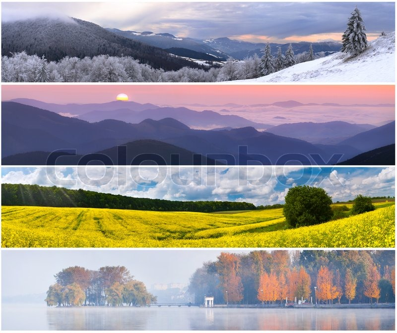 4 Season Landscape
