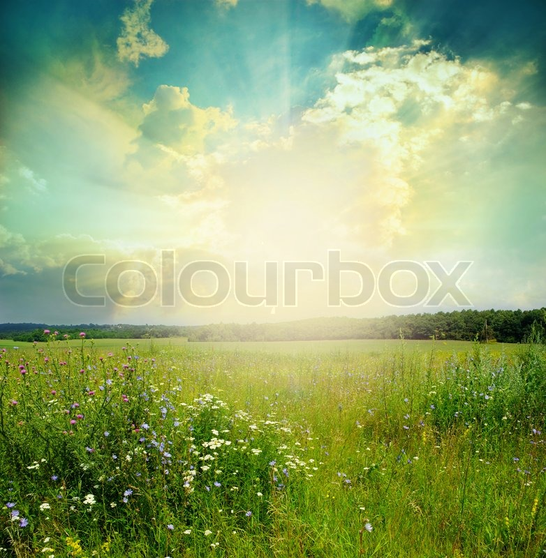 Landscape, stock photo