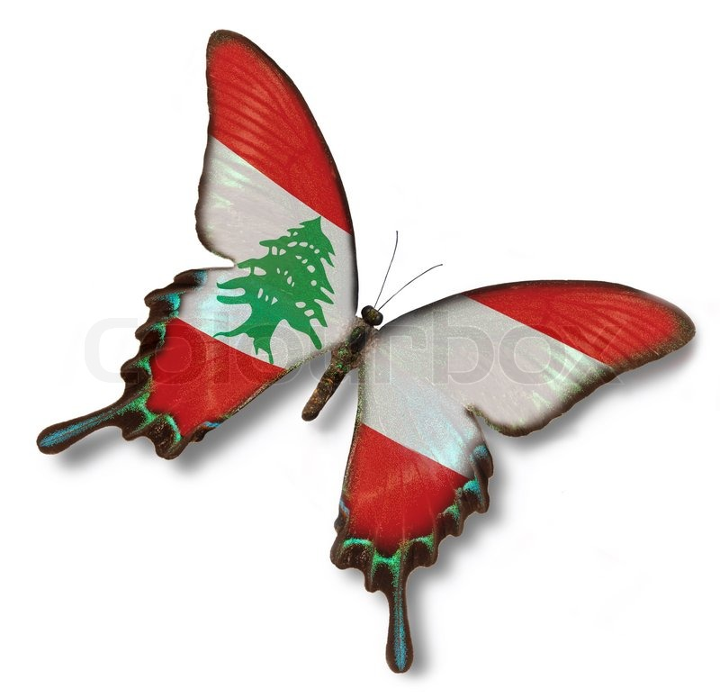 lebanon flag on butterfly stock photo colourbox