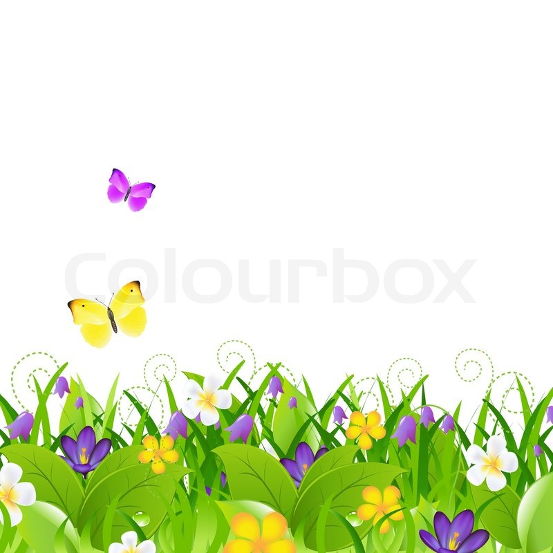 Flowers With Grass With Butterfly, Vector